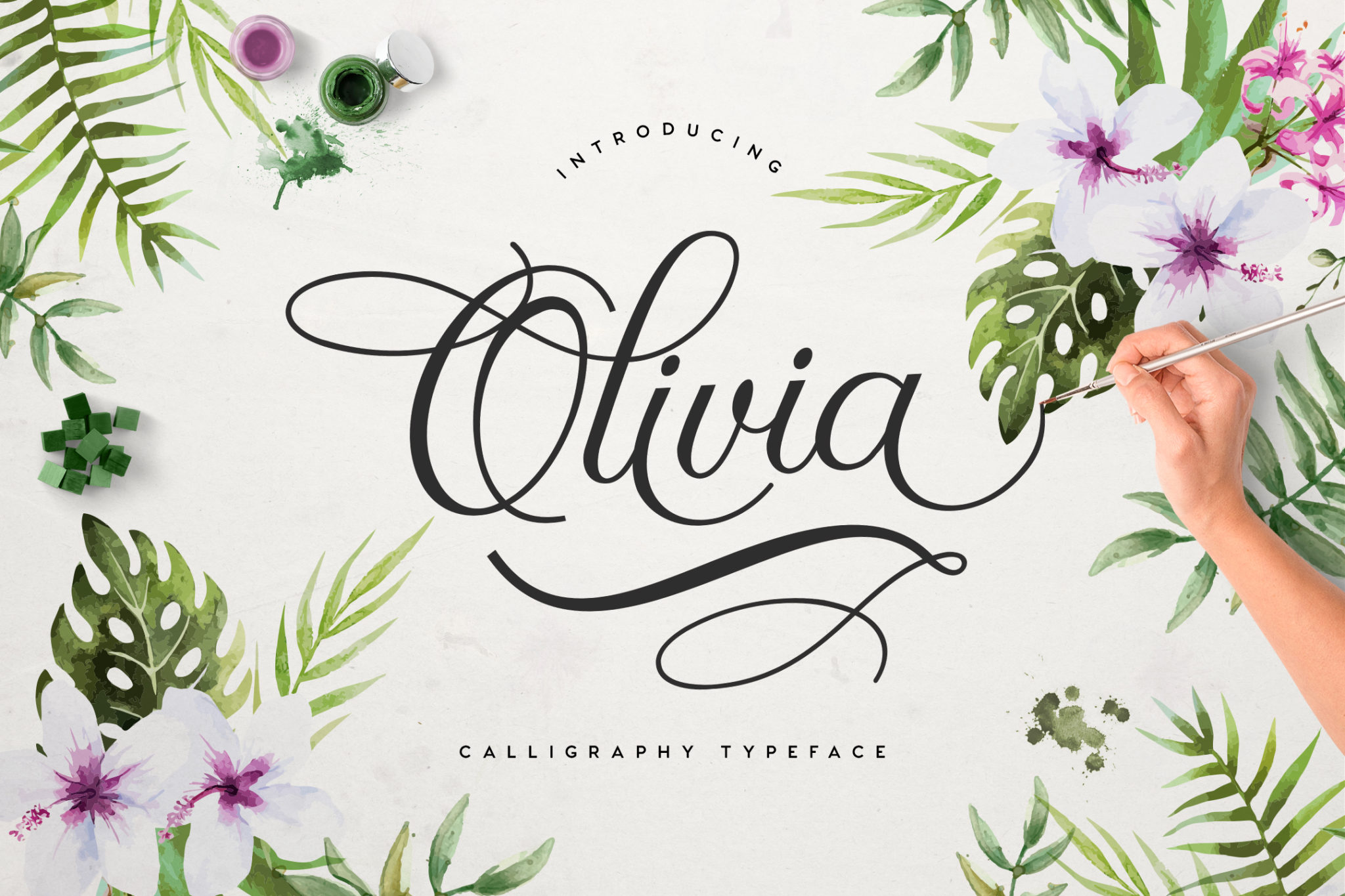 FREE FONT] Olivia Script Font - Simple Video Making